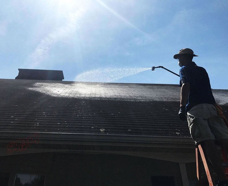 Soft Wash Roof Cleaning St Marys